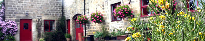 Cow Close Barn self catering accommodation in Yorkshire, luxury Self-Catering Accommodation, luxury Holiday Cottages in Yorkshire, Holiday Cottages in Harrogate, Holiday Cottages in the UK, Places to stay in Yorkshire, Holiday Accommodation in Yorkshire,  luxury Holidays in Yorkshire, Cowclose Barn, Harroagte, North Yorkshire